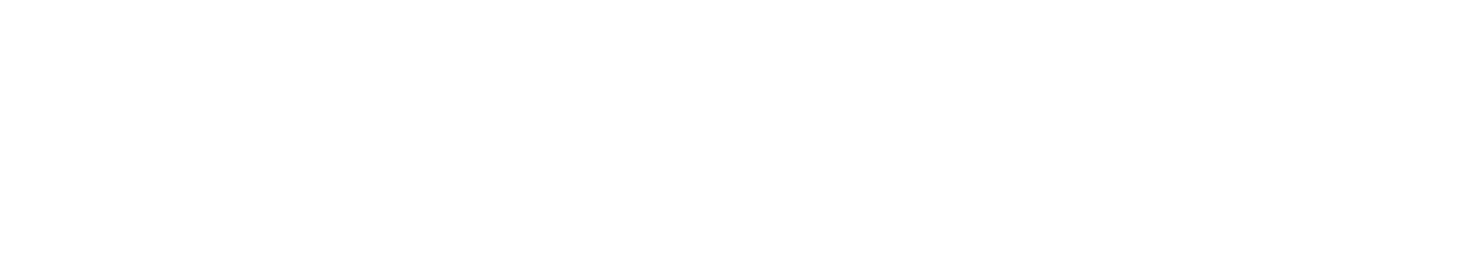 data-room.nl logo logo white